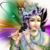 Lord Krishna Photos