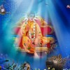 Jai Bawa Lal ji Photos, Pictutes, Images, Wallpapers, Photogallery