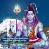 Happy Shivratri Messages, SMS – Shivratri 2015 Status, Thoughts