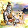 Lord Shiva Wallpapers Download