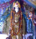 Shivala Bagh Bhaiyan Wala Mandir Pictures
