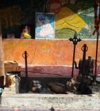 Baghwan Valmiki Mandir Pictures Ram Tirath Amritsar