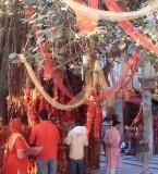 Maa Chintpurni Devi Mandir Pictures