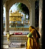 Live Kirtan & Daily Hukamnama Application from Golden Temple for Mobiles Download