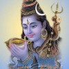 Maha Shivratri Greetings Pictures Download