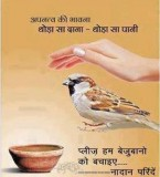 Quotes in Hindi Pictures Wallpapers Download