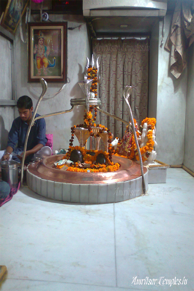 achleshwar-shivling-picture