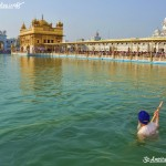 Golden Temple Amazing Pictures, Photos, images, wallpapers Download