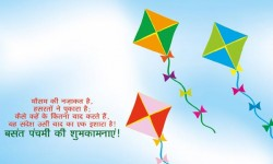 Happy Basant Panchmi Children Flying Kites,Beautiful kites Flying On Basant Panchmi